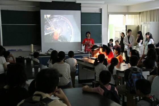 中学時代の森本さん。学祭で寄生虫の研究発表を行っている。