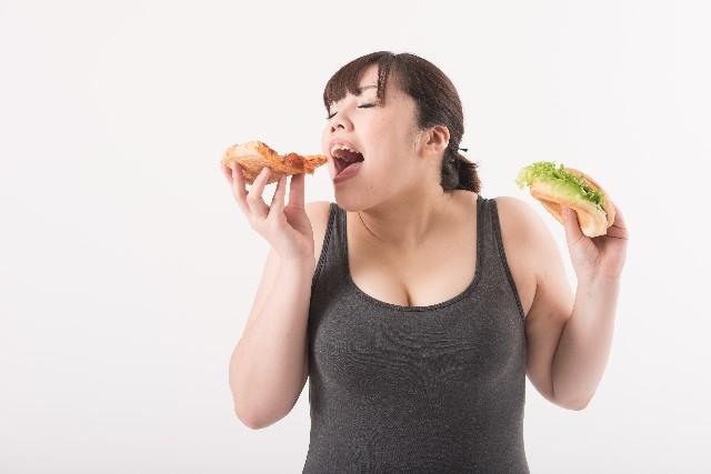 ピザ!ハンバーガー!あああもう幸せ!!!!(アメリカのイメージ)